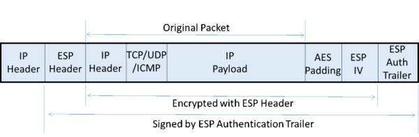 IPsec Tunnel ESP Packet