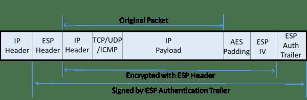 IPsec Tunnel ESP Packet